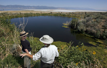Francisco Kjolseth  |  The Salt Lake Tribune Park ranger Ellen Labotka shows Bonnie Mcfarlane of Ogden and oasis rarely seen on Antelope Island called the upper Garden Pond created to help the endangered small Least Chub fish. Labotka was teaching about some of the many island resources on Antelope Island State Park and why and how they are cared for including the peregrine falcon, historic mulberry grove, fresh water springs, Least Chub fish and wheat fields.
