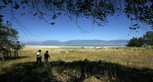 Francisco Kjolseth  |  The Salt Lake Tribune Park ranger Ellen Labotka walks with Bonnie Mcfarlane of Ogden after visiting the mulberry grove on Antelope Island. Lebotka talkd about the many island resources on Antelope Island State Park and why and how they are cared for.