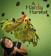 Photo illustration by Francisco Kjolseth  |  The Salt Lake Tribune A hardy harvest -- of chard and blackberries -- suggests good things to come in the rest of this summer's growing season in Utah.