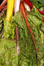 Francisco Kjolseth  |  The Salt Lake Tribune  Chard comes with a powerhouse punch of nutritious benefits.