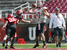 Scott Sommerdorf  |  The Salt Lake Tribune              QB Travis Wilson readies to throw while rushed by DB Mike Honeycutt at Utah football practice, Saturday, August 18, 2012. Head coach Kyle Whittingham is at right.
