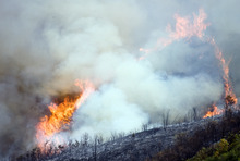 Kim Raff | The Salt Lake Tribune Flames reach high into the air off a ridge line off Highway 40 outside of Heber in Wasatch County,Utah on August 19, 2012.