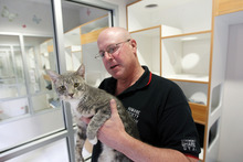Al Hartmann  |  The Salt Lake Tribune Carl Arky, communications director for Humane Society of Utah, pets one of the cats housed in one of the new