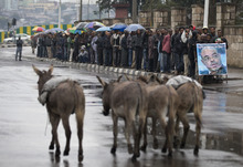 Donkeys walk past a queue of men waiting to pay their respects to the late Prime Minister Meles Zenawi, lying in state at the national palace, in Addis Ababa, Ethiopia Monday, Aug. 27, 2012. Zenawi is scheduled to be buried Sept. 2. (AP Photo/Rebecca Blackwell)
