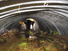 Chris Batin in the culvert before the incident, Thursday Aug. 30, 2012.