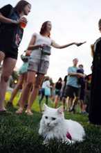 Squirrel the cat relaxed as her owner, Vannesa Gadberry, center, of Minneapolis hands out cards advertising Squirrel's Facebook page before the start of  the Walker Art Center's first