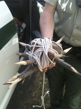 Two men were arrested in Utah County Saturday, April 21, 2012, suspected by police of setting several booby traps along a popular hiking area in Provo Canyon.