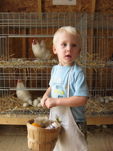 Ian Barnette with the chickens in the livestock pavillion at the Utah State Fair in 2009. (Courtesy Janet Barnette)
