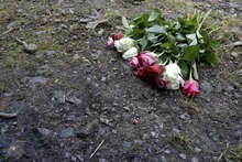Flowers are seen on the crime scene where four people have been shot to death in a British-registered car, in a forest in the Alps, near Chevaline, French Alps, Saturday, Sept. 8, 2012. The case took on international ramifications, with links that tied the slain family to Britain, Iraq and Sweden. (AP Photo/Laurent Cipriani)