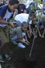 Photo courtesy Bonneville Elementary. Bonneville Elementary students Carter Olson, David Perry, Christian Hamula, Seth Olson and Harrison Murray plant their new Utah Green Schools Award tree. On Friday, September 7, 2012, the school won the Platinum Utah Green Schools Award for their green efforts during the 2011-2012 school year.