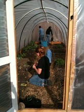 Volunteers at Wasatch Community Gardens work inside a hoop house, which extends the growing season. Courtesy Wasatch Community Gardens