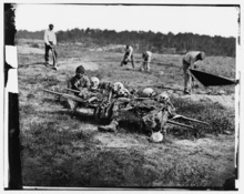 African Americans collecting bones of soldiers killed in the battle of Cold Harbor in Virginia one year earlier. (April 1865)  Courtesy of Library of Congress