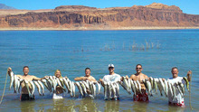 Courtesy photo  Rob Young, sons Cole, Mike, Brad, Tim and sister Lyndi, caught striped bass at will on a family vacation from their home in Monticello to Good Hope Bay on Lake Powell.