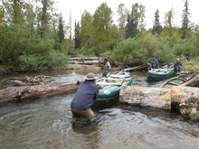 Tim Zink, front, and Mark Freeman send their raft through a recently cut portion of a log jam on Talachulitna Creek while Mike Overcast, operations manager of the Tordrillo Mountain Lodge, and Bill Klyn wait their turn. |Brett Prettyman