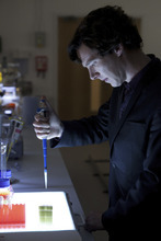 Benedict Cumberbatch as Sherlock. Courtesy BBC/Hartswood Films for MASTERPIECE