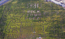 Francisco Kjolseth  |  The Salt Lake Tribune Thanksgiving Point in Lehi shows off its latest corn maze that will allow visitors to