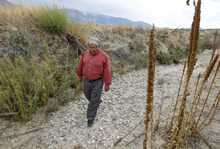 Al Hartmann    The Salt Lake Tribune Ed Naranjo, chairman of the Confederated Tribes of the Goshute Reservation, walks down a dry stream bed on the west side of the Deep Creek Mountains.  With the extended, severe drought and the threat of thirsty Las Vegans seeking to tap water underlying valleys along the Utah-Nevada line, Naranjo is wondering about the feasibility of agriculture initiatives the tribe is considering.