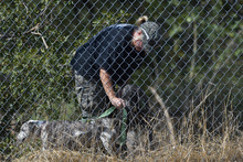 Chris Detrick  |  The Salt Lake Tribune A member of the Salt Lake City Police Department searches with cadaver dog near 1400 South and 1900 East in Salt Lake City Saturday September 29, 2012. Reed Jeppson was 15 when he was last seen on Oct. 11, 1964.