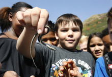 Scott Sommerdorf  |  The Salt Lake Tribune              Gabe Cowert, from Liberty Elementary in Murray shows off a small snake he found in a meadow at Sundance Resort, Thursday, September 20, 2012. He and the rest of his class took part in an Kids in Nature Program to Sundance Resort. The snake was released unharmed.