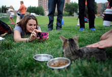 Kristin Backman of Minneapolis photographs Lil Bub before the start of the Walker Art Center's first