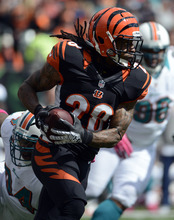 Cincinnati Bengals running back Bernard Scott (28) runs against the Miami Dolphins in the first half of an NFL football game on Sunday, Oct. 7, 2012, in Cincinnati. (AP Photo/Michael Keating)