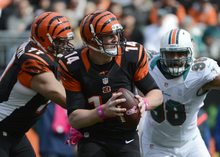 Cincinnati Bengals quarterback Andy Dalton (14) looks to pass against the Miami Dolphins in the first half of an NFL football game, Sunday, Oct. 7, 2012, in Cincinnati. (AP Photo/Michael Keating)