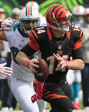 Cincinnati Bengals quarterback Andy Dalton (14) runs against the Miami Dolphins in the first half of an NFL football game, Sunday, Oct. 7, 2012, in Cincinnati. (AP Photo/Al Behrman)