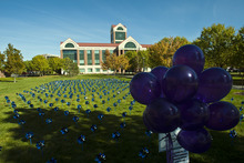Chris Detrick  |  The Salt Lake Tribune A field of 610 pinwheels outside of Sandy City Hall Tuesday October 9, 2012, represent the 610 children that witnessed domestic violence in Sandy last year. October is National Domestic Violence Awareness month.