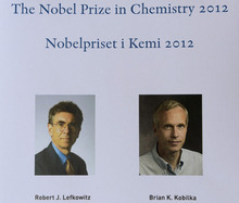 This image made available by the Swedish Academy of Sciences in Stockholm, Sweden Wednesday Oct. 10, 2012 shows Americans Robert Lefkowitz and Brian Kobilka who won the 2012 Nobel Prize in chemistry Wednesday for studies of proteins that let body cells respond to signals from the outside. The Royal Swedish Academy of Sciences said the two researchers had made groundbreaking discoveries on an important family of receptors, known as G-protein-coupled receptors.  (AP Photo/Scanpix/Swedish Academy of Sciences, HO) (AP Photo/Handout)