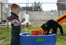 Scott Sommerdorf  |  The Salt Lake Tribune              Damien Cook has autism. He loves to play with water and feel the tactile sensation of the water on his hands as he is doing here with his cat