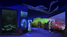 A digital rendering of the Deep Sea Gallery at The Loveland Living Planet Aquarium. The exhibit will allow people to see bottom dwelling sea animals that never see the light of day. Courtesy: The LIving Planet Aquarium