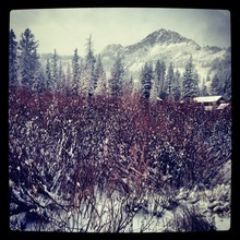 Snow at the Brighton Store near the top of Big Cottonwood Canyon signals that the ski season is just around the corner.  Courtesy Daniel Butcher