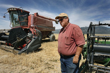 Scott Sommerdorf  |  The Salt Lake Tribune              Jim Smith, a dry land wheat farmer in Cedar Valley, stands near two wheat harvesters on a wheatfield near his property close to Cedar Fort, Monday, July 23, 2012. Smith is owed money by the Lehi Roller Mills, but says he'll wait out payment because of the Mills' importance to local farmers. Smith's family has been doing business with the Roller Mills since 1916.