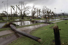 Fallen palm trees lie on a road after the hurricane Sandy in Santiago de Cuba, Cuba, Thursday Oct. 25, 2012. Hurricane Sandy blasted across eastern Cuba on Thursday as a potent Category 2 storm and headed for the Bahamas after causing at least two deaths in the Caribbean. (AP Photo/Franklin Reyes)