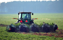Ray Morris plows up peanuts at his farm near Leesburg, Ga., on Thursday, October 25, 2012. US farmers are expected to bring in more than two-thirds more peanuts than they did in 2011. (AP Photo/Todd Stone)