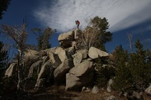 Rick Egan  |  The Salt Lake Tribune   Wally Macfarlane takes a panoramic photo of a whitebark pine forest from a rock minaret in the Wind River Mountains of Wyoming, Monday, October 1, 2012. He is attempting to document annual encroachment by mountain pine beetles.